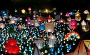 luminary art festival picture